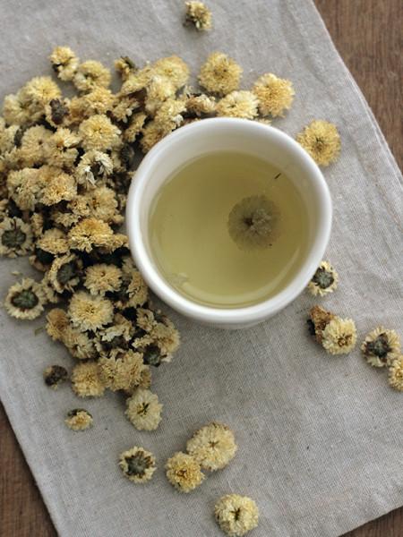 Chrysanthemum Tea-3