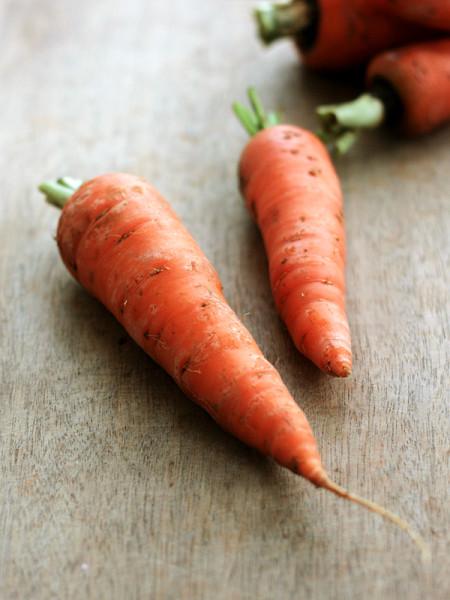 Lee's carrot-1