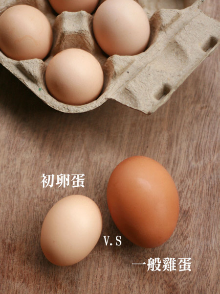 1st egg-1