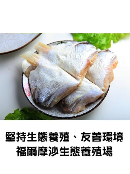 formosa fish-2