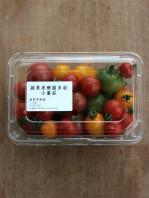 chiang's small tomato-1