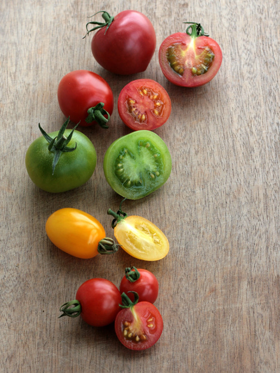 chiang's small tomato-2