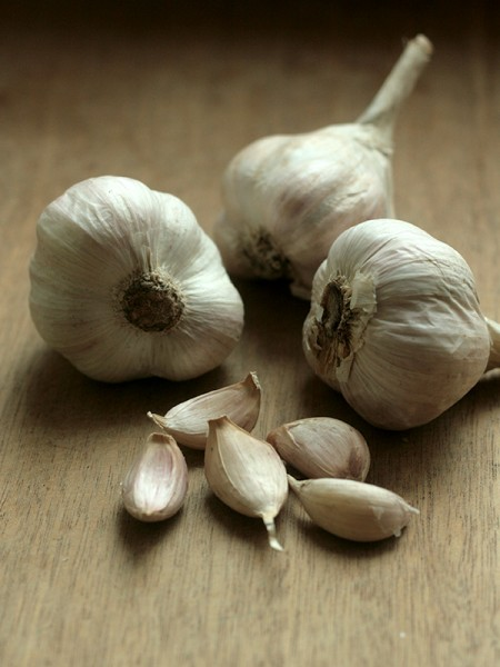 king's garlic-1