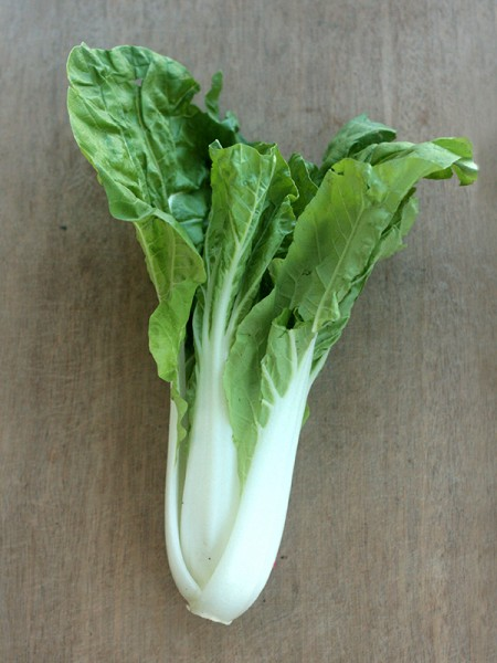 7 Chinese cabbage-1