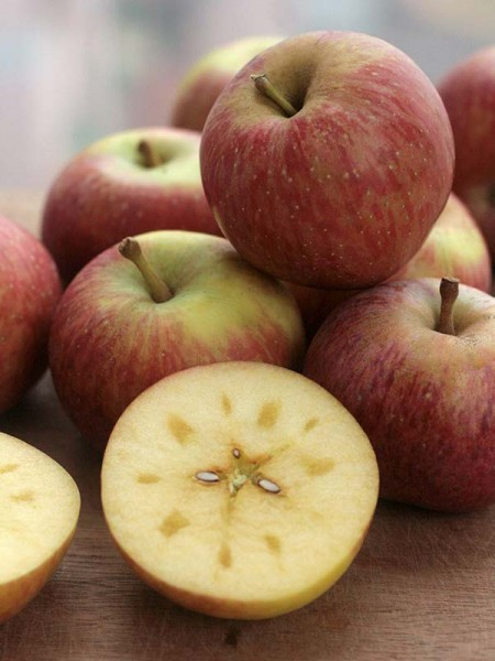 suger apple-5