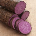 purple-chinese-yam-1