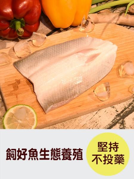 see-fish-3-1
